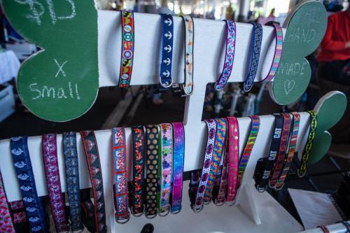dog collars-1024x683